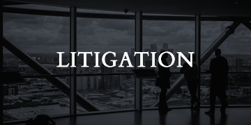 litigationl-law-home-page-services