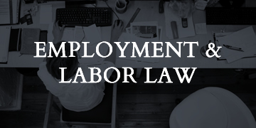 employment-labor-law--home-page-services