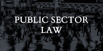 public-sector-home-page-services